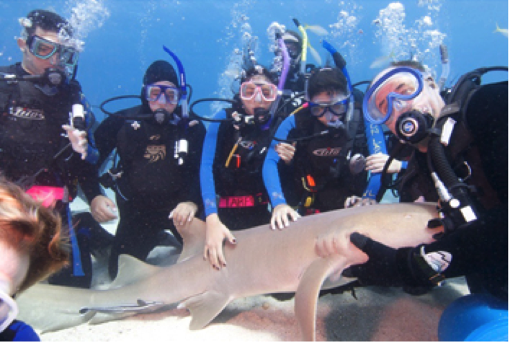 Miami Beach Senior High SCUBA Club