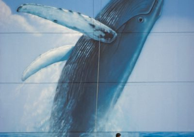 "Wyland's ""Whale Wall"""